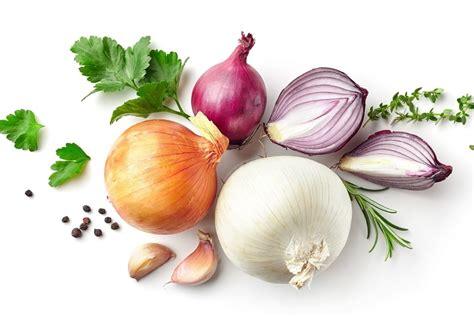 cuisiner des oignons tout sur l 39 oignon le choisir le cuisiner le conserver