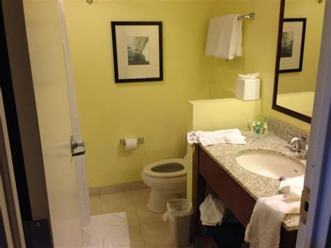 Bathroom-picture Of Holiday Inn Orlando-disney Springs
