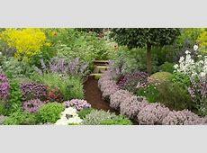 Planning a New Herb Garden Part 1