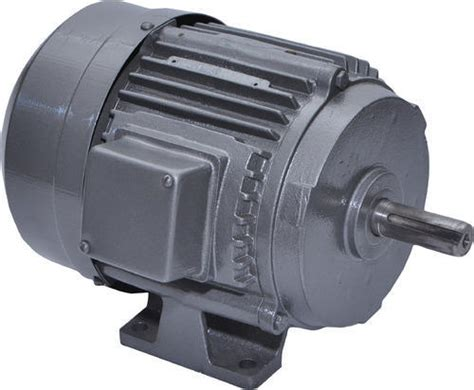 Induction Electric Motor by Three Phase Induction Electric Motor At Rs 3300