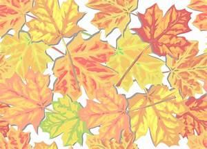 Autumn Leaf Backgrounds Clipart