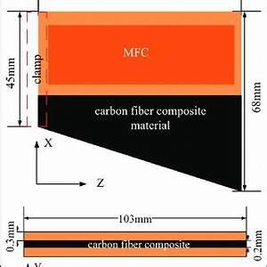 Structure Of Mfc 15 Download Scientific Diagram