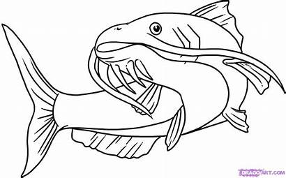 Catfish Cartoon Coloring Clip Drawings Clipart Clipartion