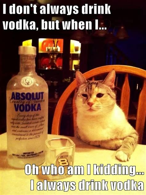 Vodka Memes - 15 funniest vodka memes you ll see today sayingimages com