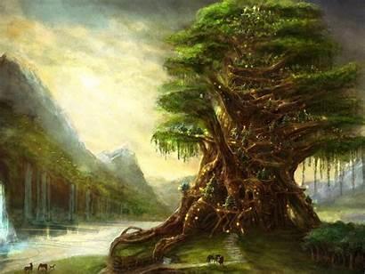 Fantasy Trees Tree Background Backgrounds Wallpapers Desktop