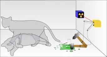 schroedinger s cat 301 moved permanently