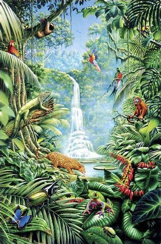 gareth williams save  rainforest   jungle art