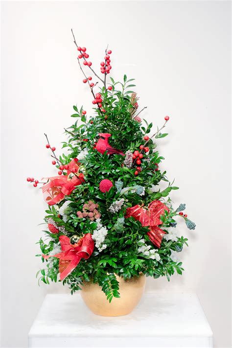 boxwood trees more angelo floral is now sunset floral design by angelo s