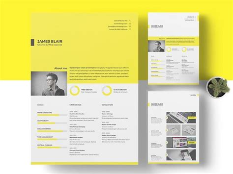 Resume Template Indesign by Find The Indesign Resume Template To Showcase Your