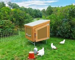 Solar Backyard Chicken Coop Building Plans DIY MOTHER