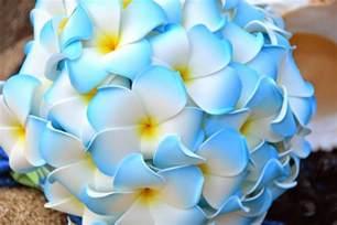 wedding flowers oahu hawaii wedding flowers blue plumeria bouquet