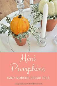 how, to, decorate, with, mini, pumpkins, and, gourds