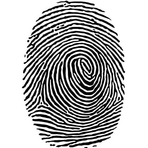 Fingerprint Clipart Fingerprint Vector Clip At Vectorportal