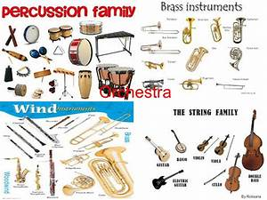 Orchestra By Roksana. - ppt video online download
