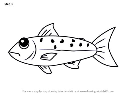 learn   draw  salmon fish  kids animals  kids