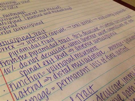 17+ Images About Obsessed With Neat Handwriting On Pinterest  Good Handwriting, Handwriting And