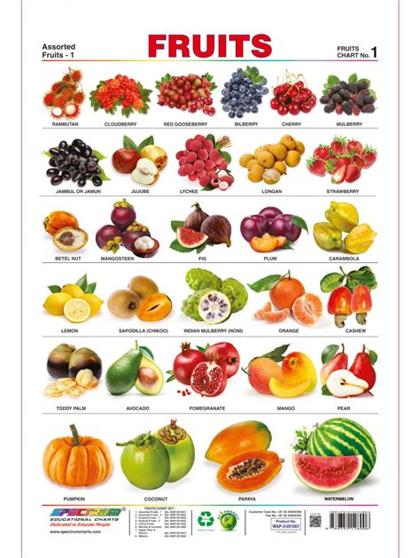 Spectrum Preschool Kids Learning Laminated Educational Fruits Name Wall Chart