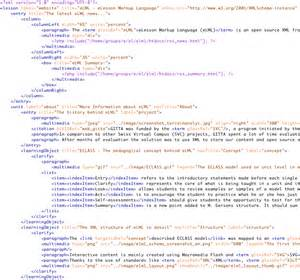 XML File Format