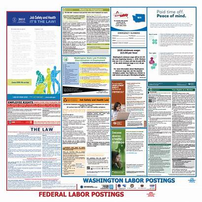 Osha Safety Labor Law Federal Washington Posters