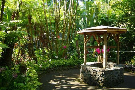 hawaii tropical botanical garden hawaii tropical botanical garden hawaii on a map