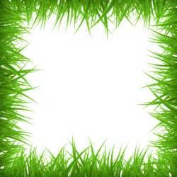 Grass Border Vector Free