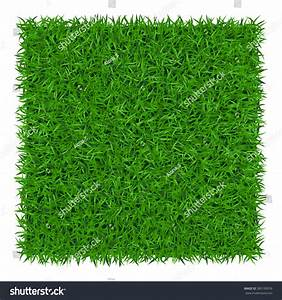 Green Grass Background Lawn Nature Abstract Stock Vector ...