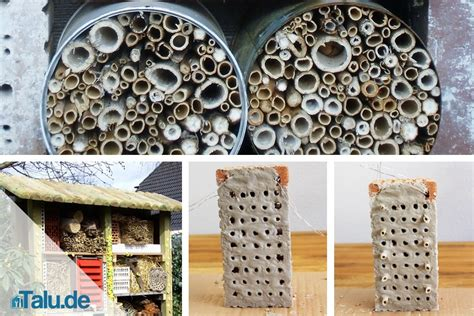 bauen mit kindern insektenhotel selber bauen kostenlose bauanleitungen talu de