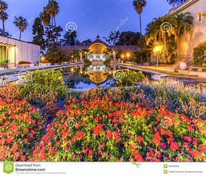 Balboa Park Flowers And Lily Pond Stock Photo