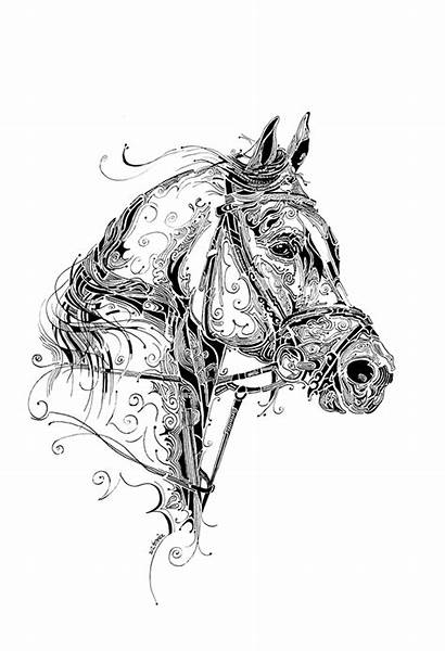 Indian Ink Horse Behance Drawings Pen India