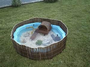 Hivernage Bassin Exterieur : bassin ext rieur pour mes tss turtle pinterest ~ Premium-room.com Idées de Décoration