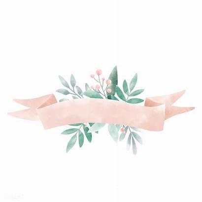 Banner Watercolor Vector Background Leaves Flower Floral