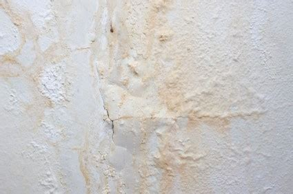 penetrating damp mould condensation damp ventilation