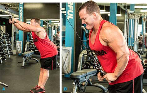 Back Workout: 5 Moves To Mile-Wide Lats