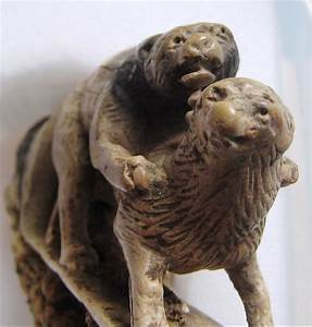 dogs mating human style