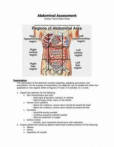 Picture Of Abdominal Quadrants