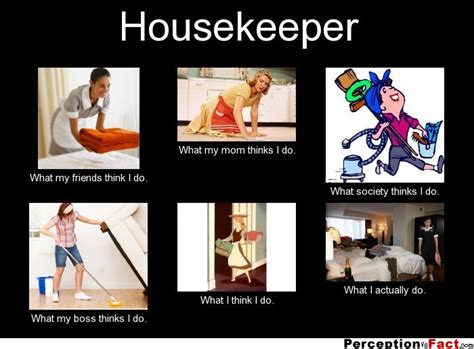 Housekeeping Meme - housekeeper what people think i do what i really do perception vs fact