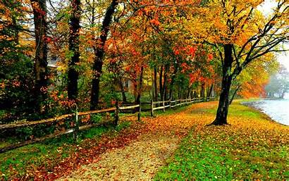 Fall Colors Backgrounds Background Wallpapers