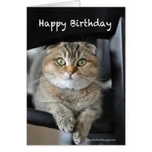 Cute Cat Happy Birthday Card
