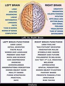 17 Best Images About Brain Functions On Pinterest