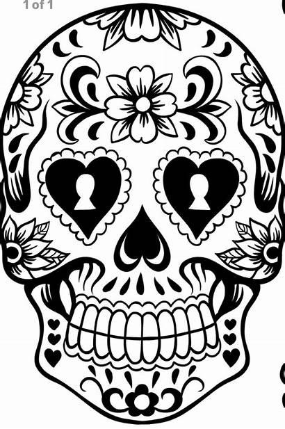 Coloring Skull Pages Sugar Printable Adults Sheets