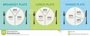 Healthy Eating Plate Diagram Stock Vector