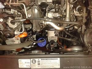 Thermostat Golf 4 : golf 6 gtd thermostat wechseln cfgb jettaflitzer alias jans leben ~ Gottalentnigeria.com Avis de Voitures