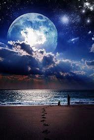 Beautiful Beach at Night Moon