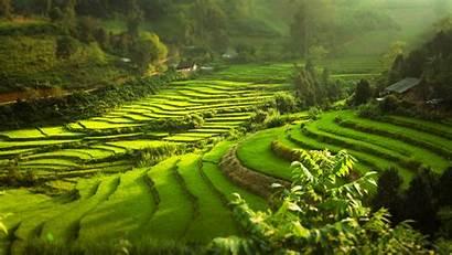 Pemandangan Gunung Vietnam Gambar Desa Asia Sawah