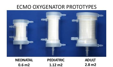 Blood Oxygenation | PermSelect-MedArray