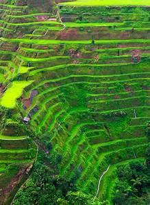 17 Tremendous Terraced Rice Fields | Mannaismaya Adventure ...