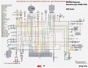 2004 Yfz 450 Wiring Diagram
