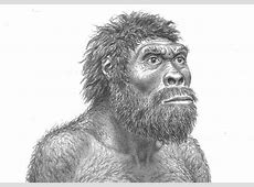 La cara masculina, modelada a puñetazos prehistóricos