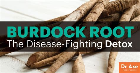 burdock root detoxes blood lymph system skin dr axe