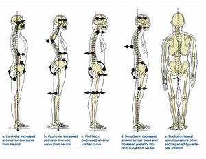 17 Best Images About Physical Assessment On Pinterest